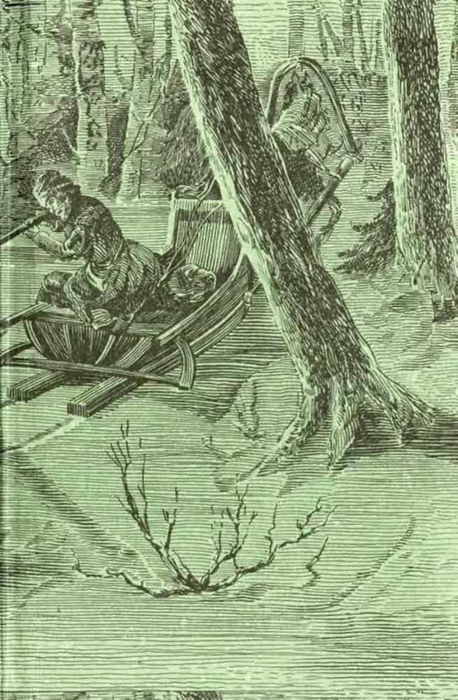 Книги про охоту в сибири скачать